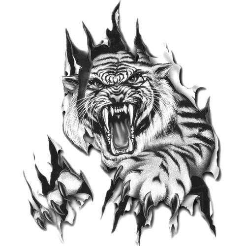 Wzór Tatuażu Tygrys Monika Wypożyczalnia Sprzętu